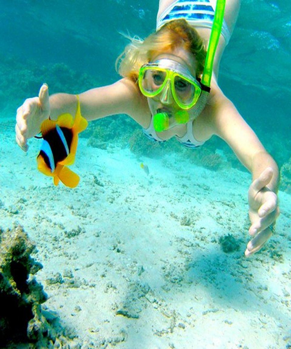 issy snorkeling paradise island